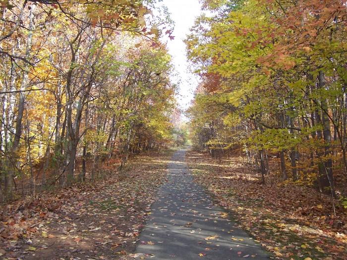 Fall in Loftridge