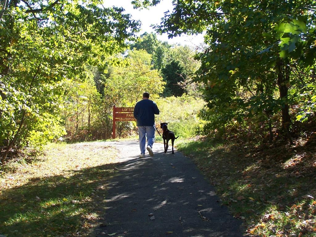 Dog walking in Loftridge Park