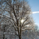 Loftridge in Winter